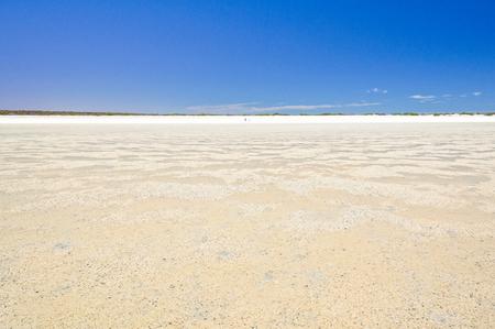 No sand just shells stretching for over 70 kilometres - Denham, WA, Australia 写真素材