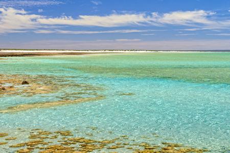 Beautiful blue-green shallow water at Hamelin Pool - Denham, WA, Australia