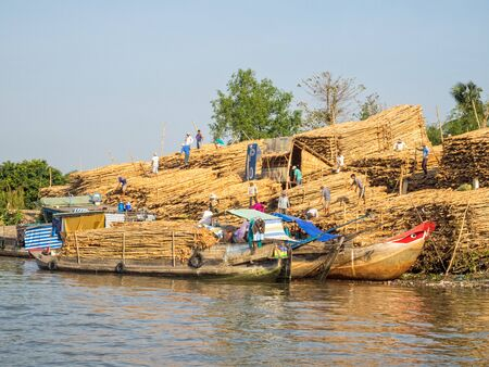 Boats loaded with wood from huge piles of trunks - Can Tho, Vietnam