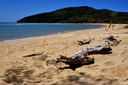 beach and sand  in nosy be  madagascar ,lowtide and tree  Stock Photo