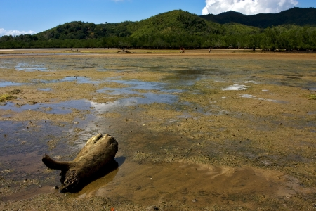 lokobe reserve, madagascar lagoon , coastline and sand Stock Photo