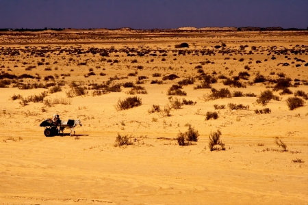 saddle camel: two people in the desert of tunisia,sahara, in a truck