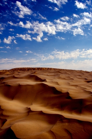 dune in the sahara desert photo