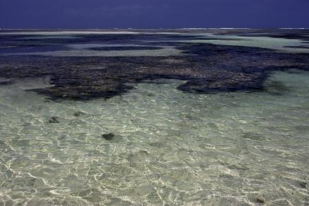 beach and coastline in tanzania zanzibar Stock Photo