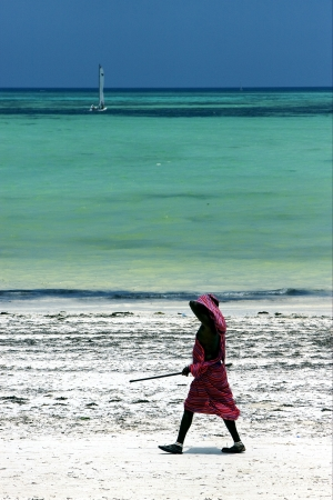 beach seaweed and masai  men in tanzania zanzibar photo