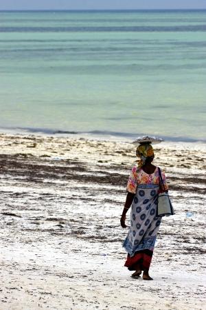 beach seaweed and masai  women in tanzania zanzibar