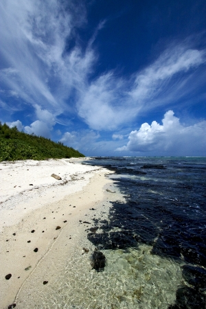 beach rock and stone in ile du cerfs mauritius Stock Photo