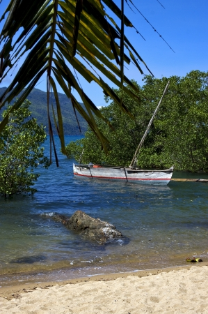 madagascar nosy be rock stone branch boat palm lagoon and coastline