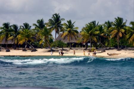oc�an c�te cabane maison de palme et des arbres dans republica dominicana