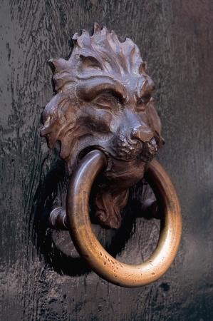 head of lion copper knocker in a door in verona italy photo