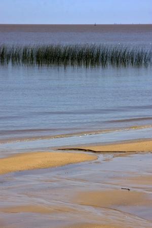 colonia del sacramento: beach in rio de la plata colonia del sacramento uruguay and grass
