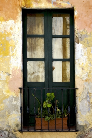 green old window little terrce and flower  in the centre of colonia del sacramento uruguay Stock Photo - 17478198
