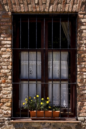 old window grate and yellow flower in the centre of colonia del sacramento uruguay Stock Photo - 17478211