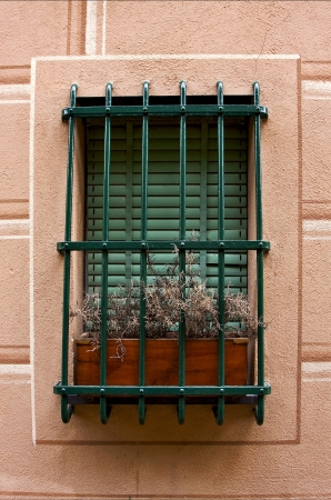 old window little pink terrace  and flower  in the centre portofino italy photo
