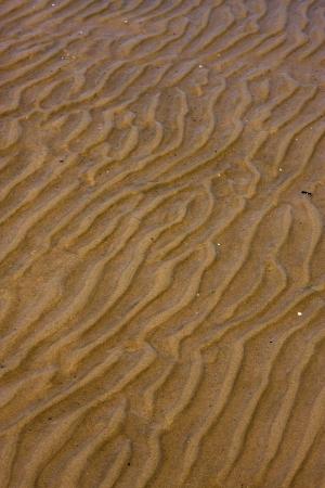 geschwungene linie: Ufer Textur und gekr�mmte Linie in Rio de la Plata Colonia del Sacramento Uruguay