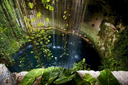 cenote mal mexico tuer la plante et l'eau dans le trou