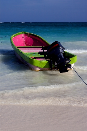 sea weed: tropical lagoon boat navigable  froth cloudy  sea weed  and coastline in mexico playa del carmen  Stock Photo