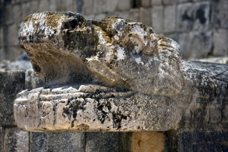 skull snake  mexico the  abstract incision in the old temple of chichen itza photo