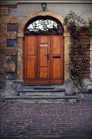 the brown door and grate  in  bellinzona switzerland  swisse photo