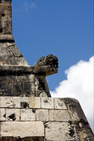 skull snake in wall  mexico the  abstract incision in the old temple of chichen itza photo