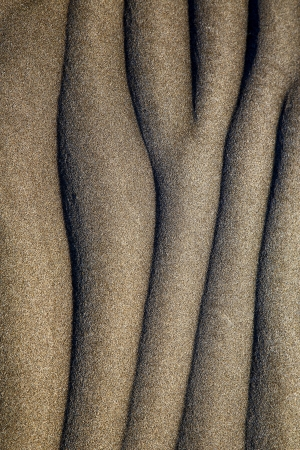 abstract texture of a  dry sand and the beach lanzarote spain photo