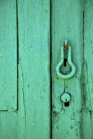 canarias: canarias brass brown knocker in a green closed wood  door  lanzarote abstract  spain   Stock Photo