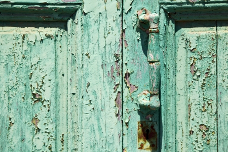 canarias: spain canarias brass brown knocker in a green closed wood  door  lanzarote abstract   Stock Photo