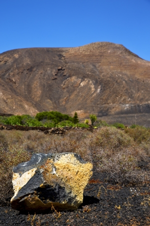 volcanic timanfaya  rock stone sky  hill and summer in los volcanes lanzarote spain plant flower bush  photo