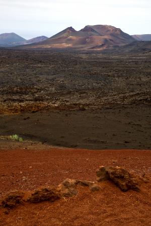 playa blanca: volcanic timanfaya  red rock stone sky  hill and summer in los volcanes lanzarote spain plant flower bush