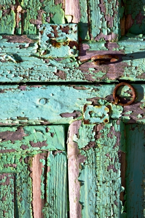 abstract  spain canarias brass brown knocker in a green closed wood  door  lanzarote   photo