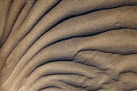 texture abstract of a  dry sand and the beach lanzarote spain photo