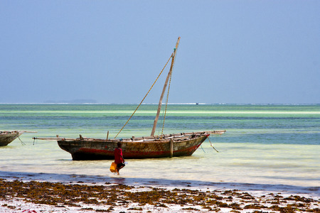 boat people and seaweed in the  blue lagoon relax  of zanzibar africa  photo