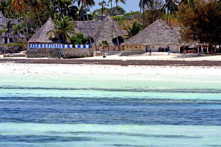 zanzibar   beach  seaweed in indian ocean tanzania       sand isle   sky and boat
