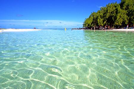 ile du Cerfs algues dans l'oc�an Indien Ile Maurice sable de montagne ciel �le et le rock Banque d'images