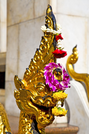 in the temple bangkok asia   thailand abstract cross        step     wat  palaces photo