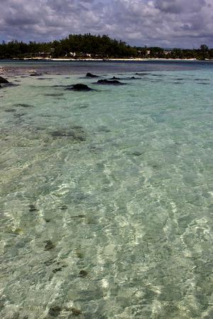 cocos: beach rock and stone in deus cocos mauritius Stock Photo