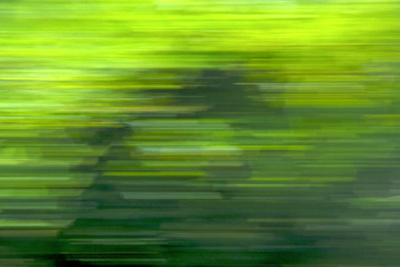 vibrance: green nature background fast line