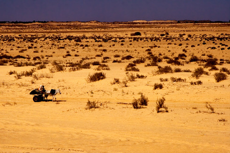 saddle camel: two people in the desert of tunisiasahara in a truck