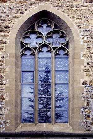 the colored rose window and a tree  in the church in  lichtenstein vaduz Standard-Bild