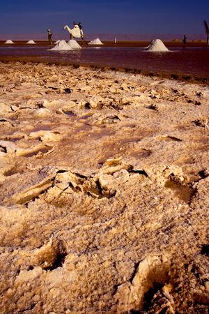 lonelyness: the salt lake desert in tunisia,chott el jerid Stock Photo