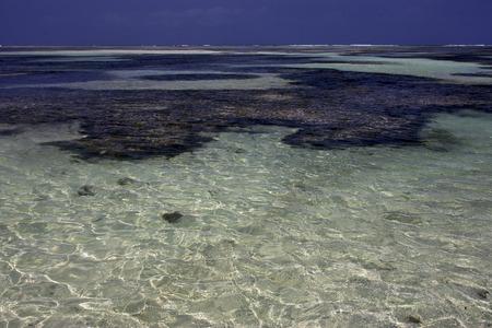 zanzibar: beach and coastline in tanzania zanzibar Stock Photo