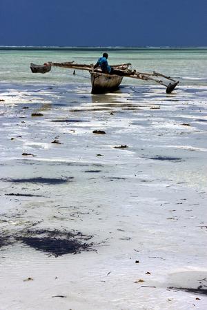 zanzibar: beach seaweed and boat in tanzania zanzibar Stock Photo