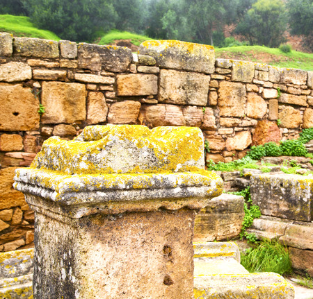 dorian: chellah  in morocco africa the old roman deteriorated monument and site Stock Photo