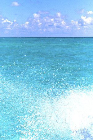 caribe: in mexico froath and blue  foam in the sea drop sunny day