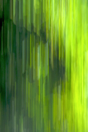 green nature: green nature background fast line
