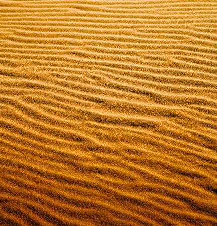 sand dune: the brown sand dune in the sahara morocco desert