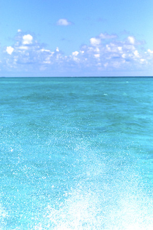 sunny day: ground in mexico froath and blue  foam  the sea drop sunny day  wave