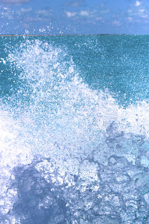 caribe: ground in mexico froath and blue  foam  the sea drop sunny day  wave
