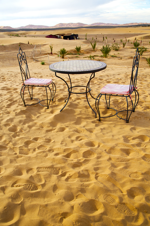 sahara: table and seat in  desert sahara morocco    africa yellow sand
