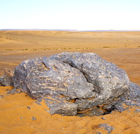 old fossil in  the desert of morocco sahara and rock  stone sky Stock Photo